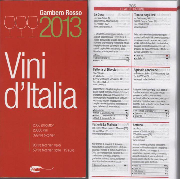 guida-vini-ditalia-2013