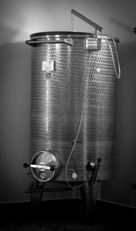contenitore per la fermentazione