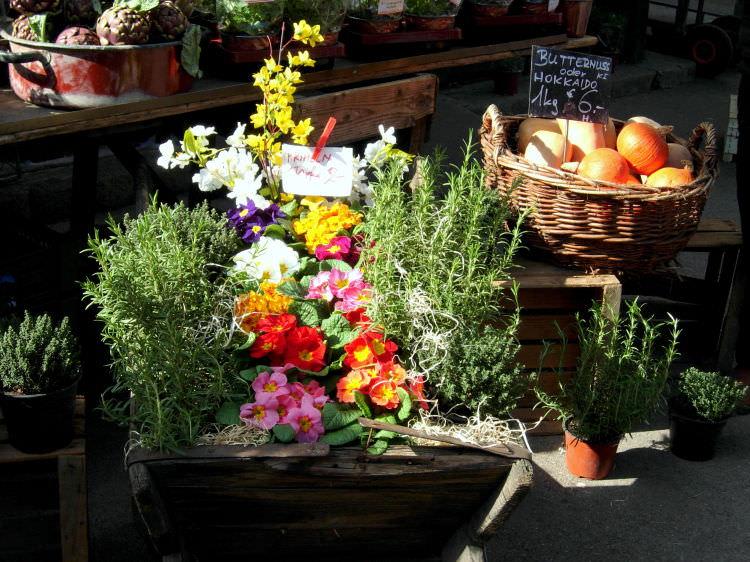 Rosmarino e fiori